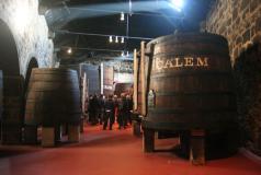 Visiting Porto Cálem cellars